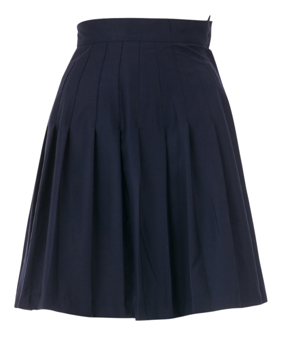 louche rima navy pleated knee length skirt designer